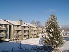 窗前雪景1