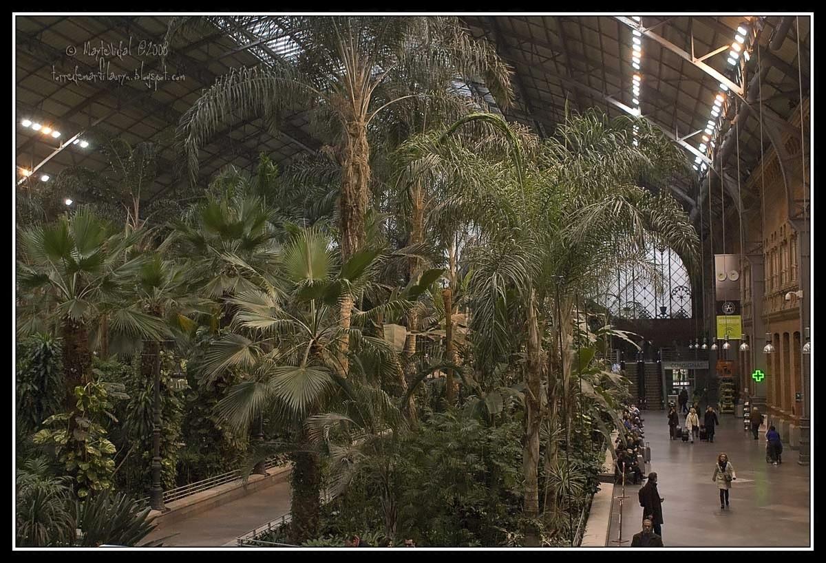 Una selva en la estación