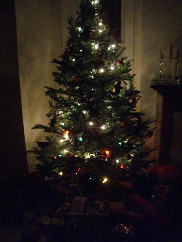 12-25-08-Tree-1