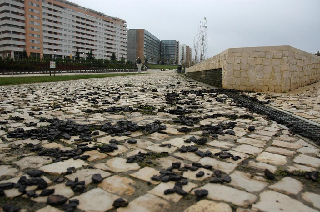 Alta de Lisboa (Dezembro 2008)