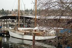 The beginning (Schooner girl) Tags: sailboat schooner sassafrass woodboat