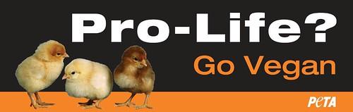 PETA (Pro-Life)