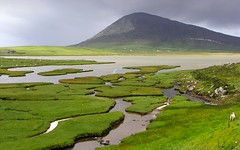 Ceapabhal, Isle of Harris, Scotland (the44mantis) Tags: sea mountain green landscape island scotland highlands hiking walk hill escocia hike crofting westernisles saltmarsh hebrides schottland schotland ecosse outerhebrides fertile scozia saltings naheileanansiar scarista northton sgarasta chaipaval fidean ceapaval