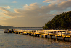 Jetty(Chowder Bay) (Robert Brindley) Tags: clouds bay jetty sydney australia sydneyharbour flickrsbest theperfectphotographer