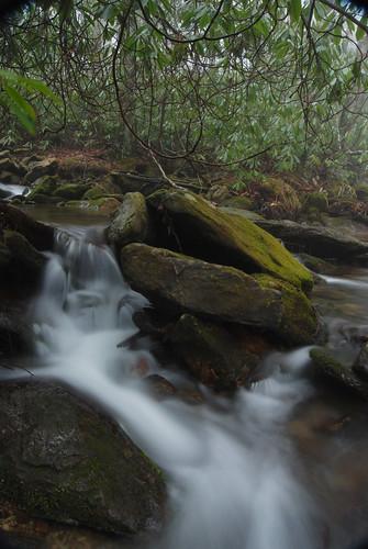 Mtn Stream