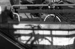 la Bici Ombra (Urca) Tags: blackandwhite bw analog italia milano ombra bn bici 2008 biancoenero bicicletta nikonfe2 biciclette magreconsolazioni