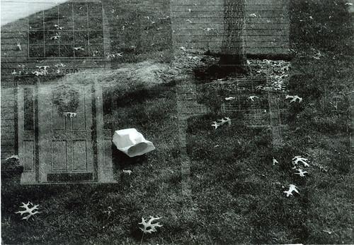 door/littered grass