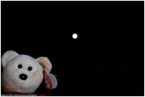 Luna-20080618-003.jpg