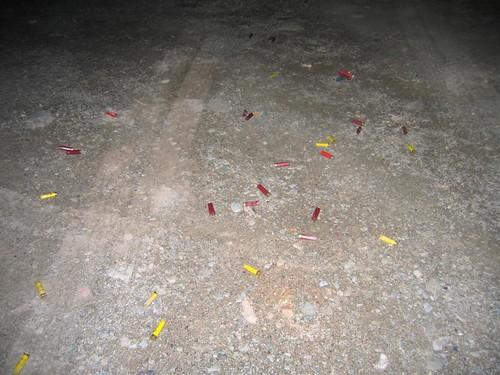 Shotgun shells at Edelman's