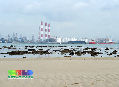 Jurong Island from Cyrene Reef