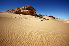 Great Sand Sea  -  Desert