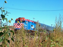 Eastbound Metra / Union Pacific west line train passing through the weeds alongside the Union Pacific M-19A diesel shop. Chicago Illinois. October 2006.