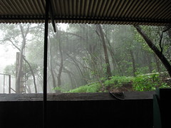 India - Matheran - 18 - Monsoon rains (mckaysavage) Tags: india rain monsoon maharashtra hillstation matheran