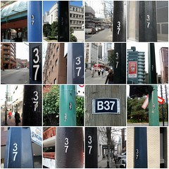 Pole 37s, GWV challenge (mag3737) Tags: fdsflickrtoys mosaic poles 37 guesswherevancouver utilitypoles gwv