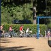Tour de Parks - Hillsboro-12.jpg