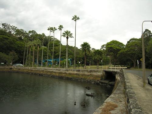 20060316_031