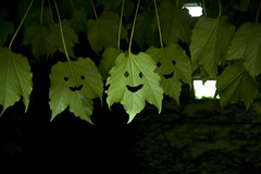 happy leaves! (kozyndan) Tags: art leaves japan happy tokyo leaf artist exhibition akasaka smileyface akasakaartflower