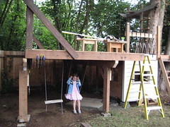tree house (ornery rhinocerous) Tags: construction backyard charlotte swings treehouse olympia treefort