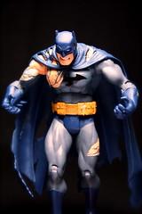 Batman - Infinite Crisis (chanchan222) Tags: comics toys dc bruce wayne vinyl batman figures pvc danchan danielchan chanchan222 wwwchanofamericacom chanwaibun httplifeofplasticcom