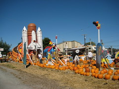 Pumpkin Patch IMG_1798.JPG Photo