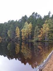 Loch Garten (f_shields) Tags: autumn reflection tree reflections scotland highlands autumncolours loch garten lochgarten s5800 151008 weekinnethybridge