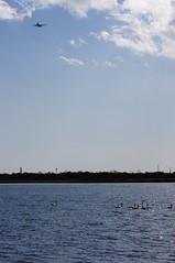 旅客機が上空を飛ぶ湖
