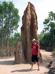 australie_termites2
