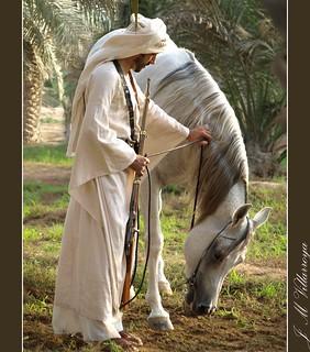 Qatari friends - PA310371ts