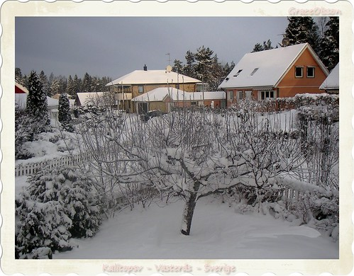 winter...my house is all white...