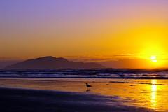 Life Worshipper (tomraven) Tags: sunset sea beach clouds surf kapiticoast otakibeach bej betterthangood tomraven