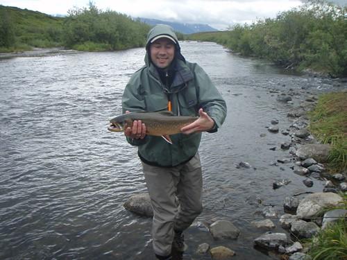 SW Alaska Dolly Varden