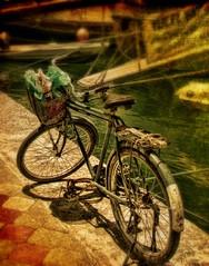 bicycle (Steel Steve) Tags: bravo gbr goldenglobe blueribbonwinner firstquality fineartphotos mywinners aplusphoto infinestyle theperfectphotographer ilovemypics obq
