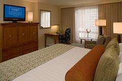 Hyatt Regency Tampa - Guestroom