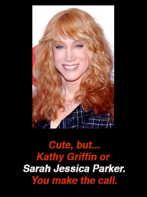 kathy-griffin-sarah-jessica-parker-lookalike