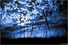 Blue Ray_1972 (sheke1) Tags: blue sky ontario clouds canon dark ray sigma kerry georgetown rays 1850 onblue halton sigma1550 withsky sheke1 kerrysheppard canoneosxsi
