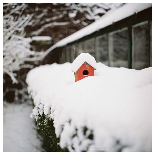 house for rent (snow insulated)