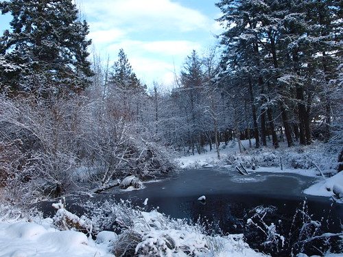 Winter on Vancouver Island
