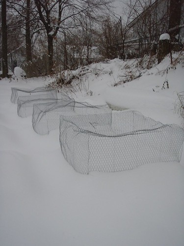 Raised beds and cages