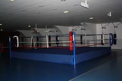 Palais_des_Sports_0018 (Gilles Couteau) Tags: puteaux palaisdessports 92800 iledeputeaux
