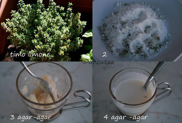 come usare l'agar agar