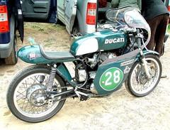 Ducati mono vert (gueguette80 ... non voyant pour une dure indte) Tags: old france green bike race mono vert course single ducati circuit nord motos lezennes motorrad anciennes italiennes monocylindre lillerijsel