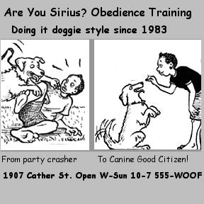 elaine richards, obedience training