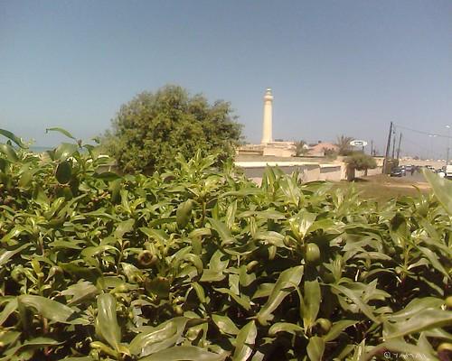 Casablanca Elhank منار العنق