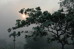 Zonsopgang boven Borobudur