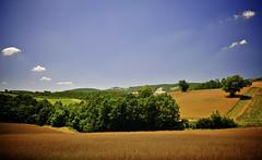 Maremma Estiva (Dimiti) Tags: italy landscape sigma tuscany toscana paysage 2008 toscane paesaggio maremma d300 sigma1020 sigma1020mmf456exdchsm cinigiano
