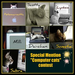 Special mention June contest