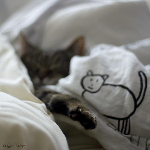 nakenbilder av ting å gjøre når man er syk