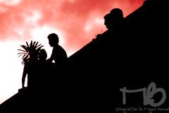 Desde la azotea (Miguel ngel Bernal) Tags: street streets color indgenas mxico mexico calle folklore oaxaca costumbres cultura calles tradicin colorido tradiciones guelaguetza folclor calenda tradicionesmexicanas guelaguetza2008 costumbresoaxaqueas tradicionesindgenas calenda2008