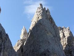 ecco il pirolo da vicino (tremendo2008) Tags: montagne pale vette dolomiti piroli bureloni