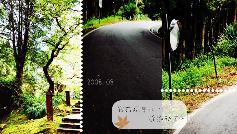 追逐秋天。-05